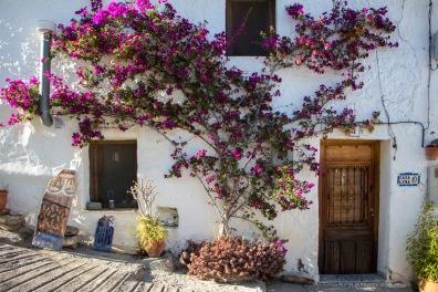 Retraite_Andalusië-8983-MargrietKlippel