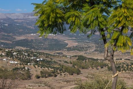 Retraite_Andalusië-9054-MargrietKlippel