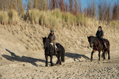 Paardrijden langs het strand | Nollestrand
