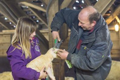 Rens Duvekot | Schapenboerderij