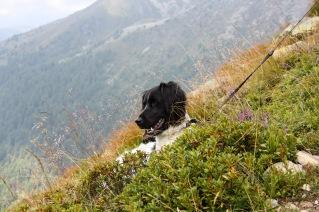 Süd-Tirol | Noord-Italië