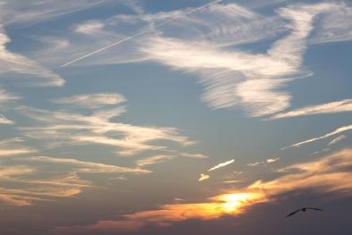 Dishoek sunset-9842