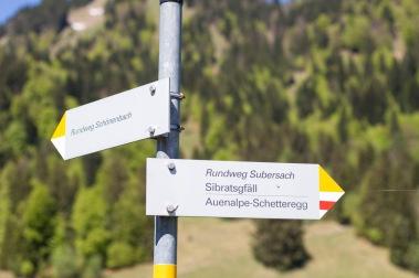 1200_Schönenbach-3268-1
