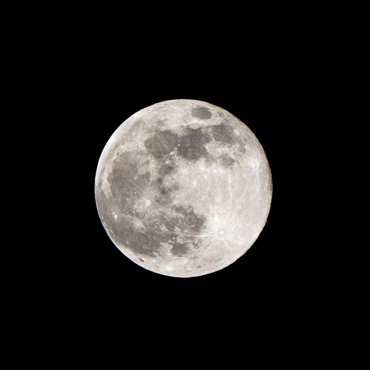 Volle maan, supersneeuwmaan, 19 februari 2019 tijdstip opname 22.13 uur. Maanopkomst 17.48 uur Maanondergang 07.59 uur (Maan 1)